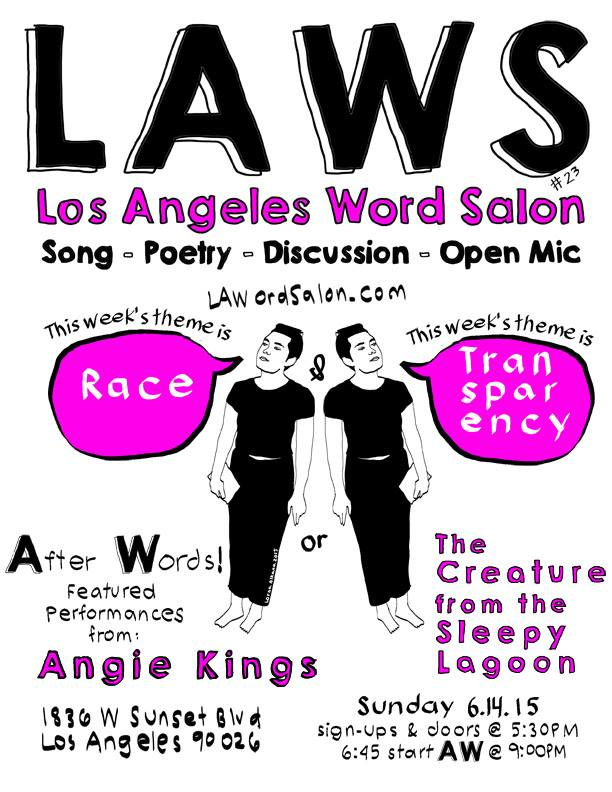 laws 23 race transparency flyer