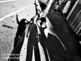 lawordsalon shadows evidence